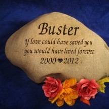 busterrock2