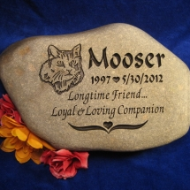mooserrock