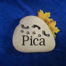 picarock1