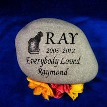 raycat2