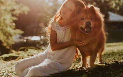 Everything You Need To Know About Pet Memorials